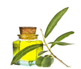 ingredient_olive_oil