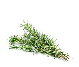 ingredient_rosemary_leaf