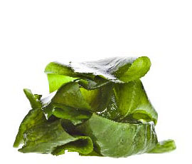 ingredient_seaweed